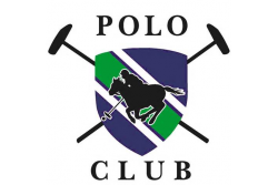 Gloucestershire Festival of Polo, Entry for Four in One Car 9 - 10 June, Beaufort Polo Club, Westonbirt (Up to 62% Off)