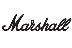Marshall Mid Bluetooth Headphones With Free Delivery